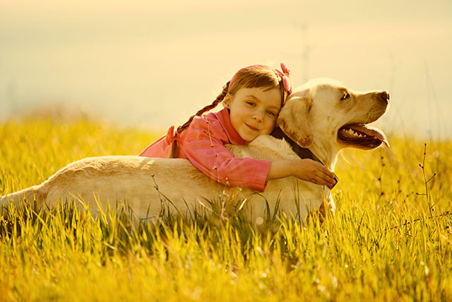 pet dog and girl